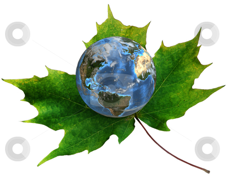 Blue Earth on green maple leaf stock photo, A blue planet Earth rests on a green maple leaf. 3D render. by Michael Brown