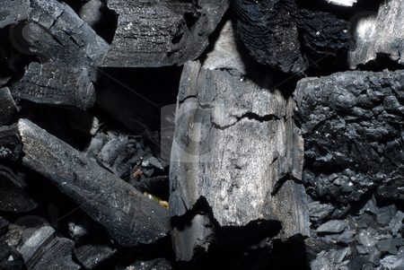 Charred Wood stock photo, Macro view of some charred wood from a fire by Richard Nelson