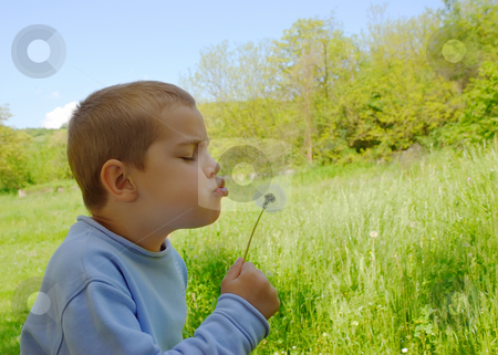 Boy and a dandelion stock photo, A cute boy is blowing a dandelion by Ivan Paunovic