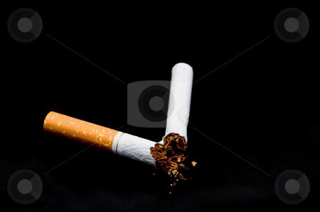 Broken Cigarette stock photo, A broken nicotine laden tobacco cigarette. by Robert Byron