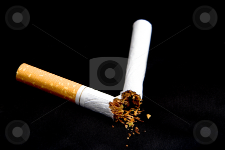 Broken Cigarette stock photo, A broken nicotine laden tobacco cigarette. by Robert Byron