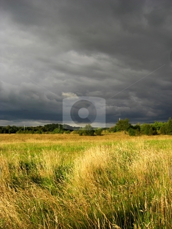 Grassy meadow landscape stock photo, Grassy meadow with dramatic, sunset sky by Juliet Photography