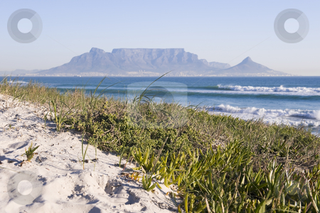 Table mountain Cape Town stock photo, Table Mountain - the world famous landmark in Cape Town, South Africa. Picture taken on a clear Winters day from the Blouberg Strand beach. A sand-dune with some green folliage is in the foreground. by Nicolaas Traut