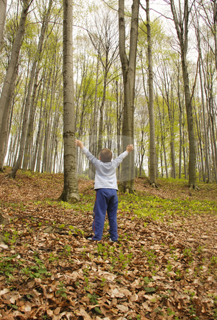 Earth lungs stock photo, A boy is standing in the woods with hands up, breathing the air by Ivan Paunovic