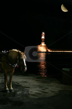 Horse with lighthouse behind stock photo,  by John Tsilidis