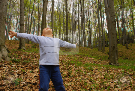 Earth lungs stock photo, A boy is standing in the woods with arms spread, breathing the air by Ivan Paunovic