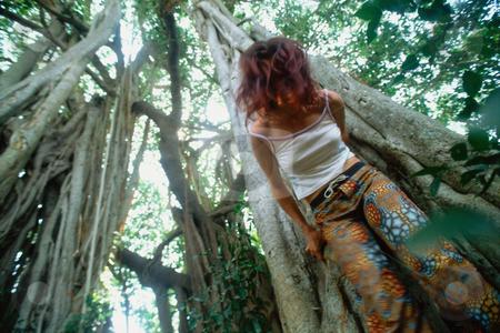 MPIXIS550211 stock photo, Woman hugging tree by Mpixis World