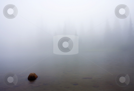 Foggy Sentinels stock photo, An eerie landscape created by a heavy summer fog up on the slopes of Mt. Rainier. by Mike Dawson