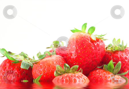 Wet Strawberries stock photo, A bunch of delicious strawberries sitting in cool water. by Robert Byron
