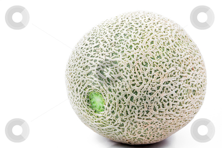 Cantaloupe stock photo, Delicious and freshly picked natural organic cantaloupe. by Robert Byron