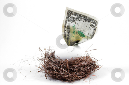 Nest Egg stock photo, A dollar bill hatching from an egg in a nest. by Robert Byron