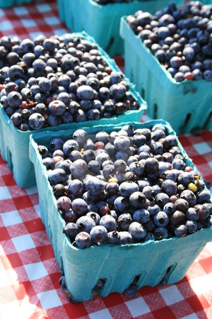 Blueberries  stock photo, Fresh picked blueberries in blue boxes on a red and white cloth, at the farmers market by Tom and Beth Pulsipher