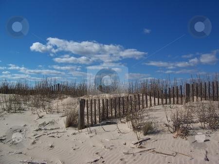 Beach dunes stock photo, Sand dunes and blue sky on the Texas coast by Sam Sapp