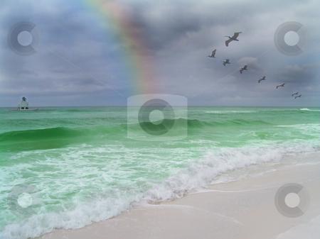 Emerald Coast stock photo, Pelicans and rainbow on the emerald coast by Sam Sapp