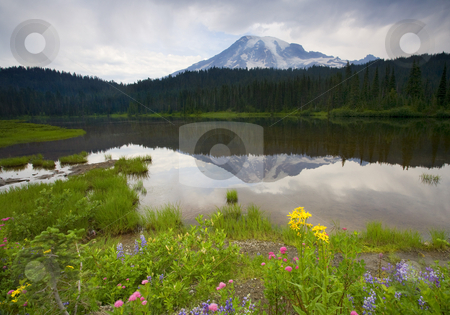 Majestic Reflection stock photo, A storm clears over Mt. Rainier and Reflection Lakes by Mike Dawson