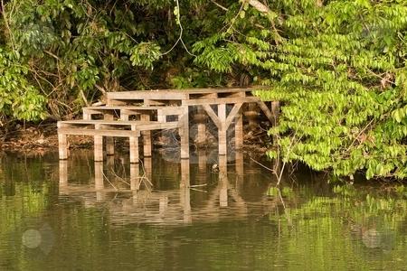 Lake Sandoval stock photo, Lake Sandoval in Peruvian Amazon rainforest by Mariusz Jurgielewicz