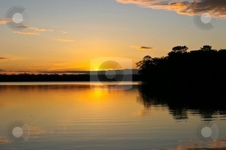 Lake Sandoval stock photo, Lake Sandoval is located Tambopata-Candamo which is a nature reserve in the Peruvian Amazon Basin south of the Madre de Dios River by Mariusz Jurgielewicz