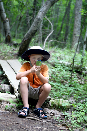 Boy studying nature stock photo, Young boy looking through magnifying glass at a leaf found on the hiking  trail by Sue and Shawn Roberts