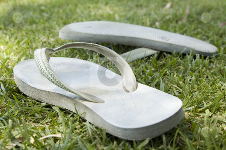 Summer Days stock photo, Thongs or flip flops on grass on a summer day in Australia. Color photo landscape, daylight, daytime. by Irene Scales
