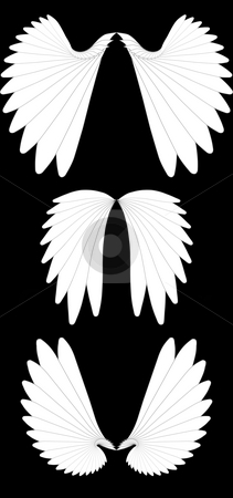 Angel wings stock photo, Set of photoshop-rendered fractal illustration of white angel wings isolated over black by Natalia Macheda