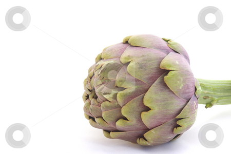 Artichoke stock photo, Close-up of lying artichoke isolated over white by Natalia Macheda