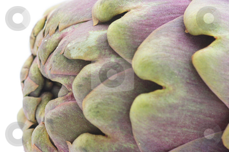 Artichoke close-up stock photo, Extreme close-up of artichoke isolated over white by Natalia Macheda