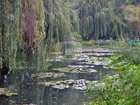 Water lilies stock photo, Water lilies near the home of Claude Monet in Giverny, France by Antoine Cherrier