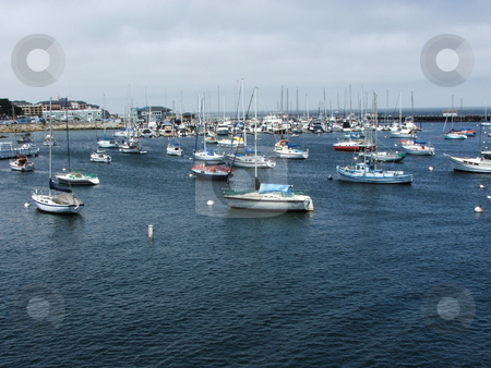 Boats at Monterey Marina stock photo, Sailboats, blue water, and a sunny day at the Monterey, California marina provides a relaxed setting on an early spring day. by Dennis Thomsen