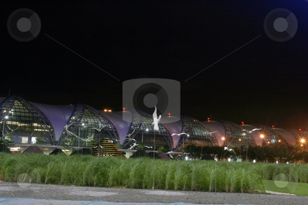 Airport garden stock photo, White birds night shut at bangkok new airport suvarnabhumi by EVANGELOS THOMAIDIS