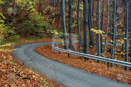 Country road in autumn stock photo, Country road in autumn by Fesus Robert