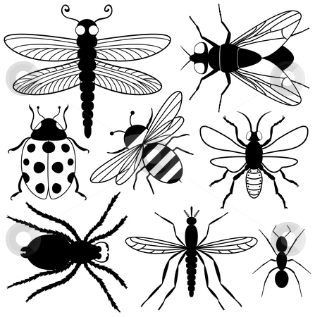 Eight Insect Silhouettes stock vector clipart, Eight Insect Silhouettes by Adrian Sawvel