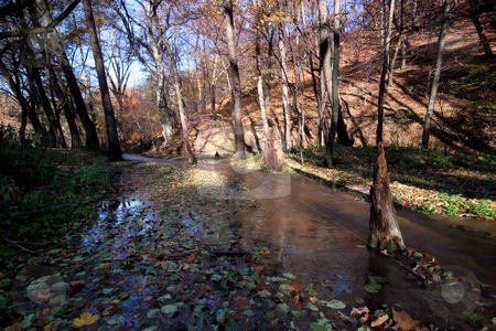 Water in autumn  forest stock photo, autumn colors in the forest by Fesus Robert