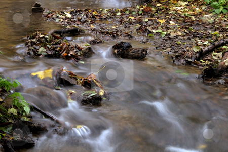 River in autumn  forest stock photo, autumn colors in the forest by Fesus Robert