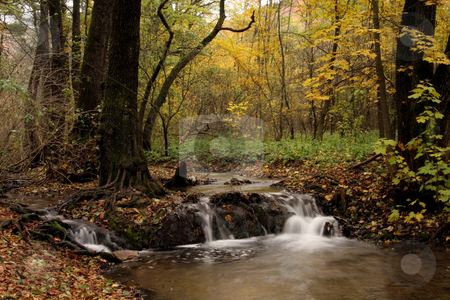 Tiny waterfall autumn colors in the forest stock photo, autumn colors in the forest by Fesus Robert
