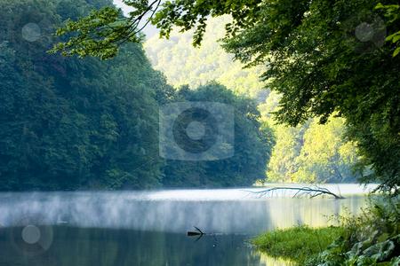 Lake morning in summer stock photo, Lake morning in summer by Fesus Robert