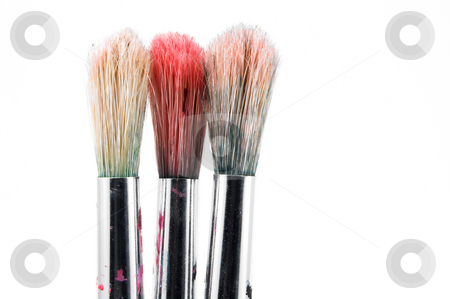 Paint Brushes stock photo, The typical type of paint brush used by artists. by Robert Byron