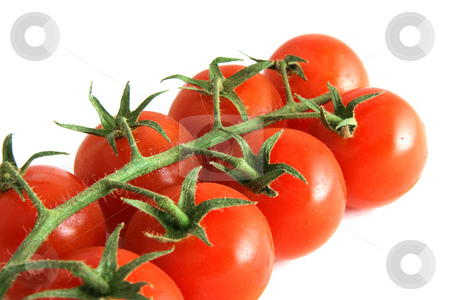 Ripe tomatoes stock photo, Branch of cherry tomatoes, isolated on white by Tilo