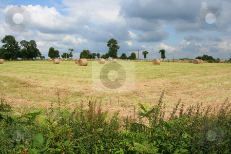 Round bales stock photo, Round bales of hay in a filed by Tilo