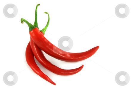 Red chili peppers  stock photo, Red hot chili peppers isolated on white by Tilo