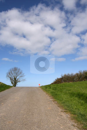 Road's end stock photo, A stop sign and a tree at the road's end by Tilo
