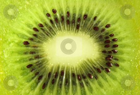 Kiwi fruit stock photo, Kiwi slice close up by Tilo