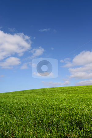 The green hill (vertical) stock photo, A green hill under a blue sky by Tilo