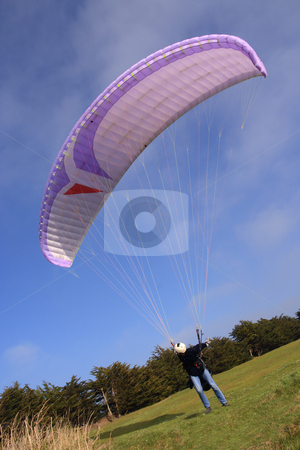 Purple paraglider launching stock photo, Purple paraglider before the jump (vertical) by Tilo