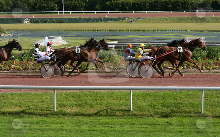 Horse race stock photo, Harness racers, sulky horses and drivers by Tilo