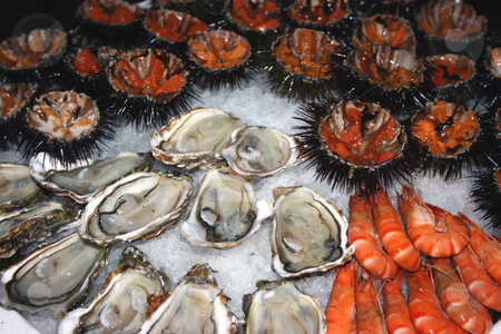 Seafood decoration 2 stock photo, Seafood (oysters, shrimps, sea-urchins, mussels) are decoratively put on ice in a big plate. by Natalia Macheda