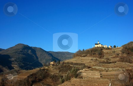 Segonzano church stock photo, Church on a hill covered with vineyards in Segonzano, Italy. Winter period by Natalia Macheda