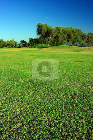 Green landscape stock photo, Green golf course under deep blue sky by Natalia Macheda
