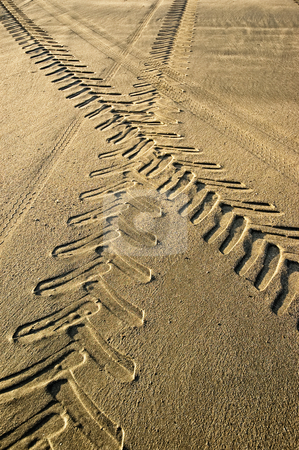 Tracks in the sand. stock photo, Tractor and car tracks in the sand. by Pablo Caridad