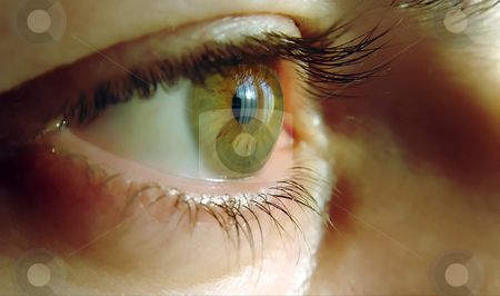 Eye stock photo, A close-up of a human eye, green color by Ivan Paunovic