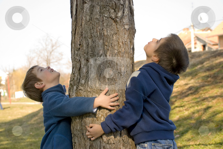 Boys hugging a tree stock photo, Two boys hugging a tree and protecting it by Ivan Paunovic
